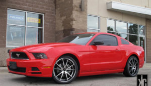 FORD MUSTANG – GIANELLE DAVALU