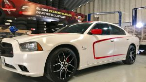 DODGE CHARGER – GIOVANNA HALEB